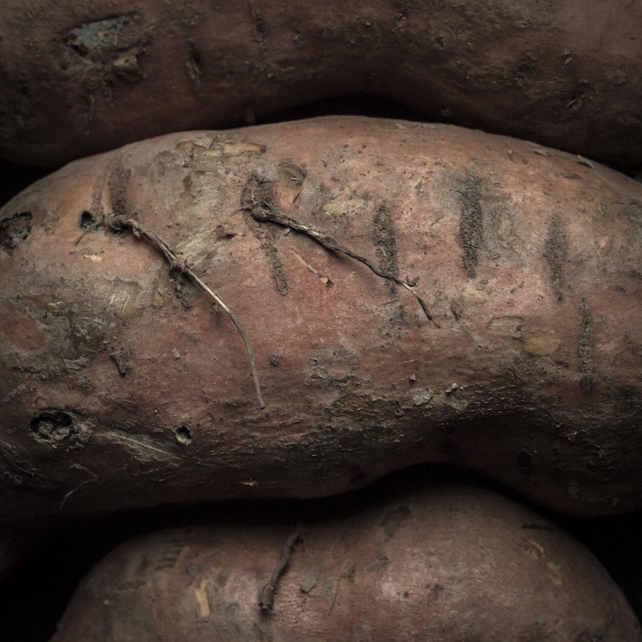 zoete aardappel (1 van 1)